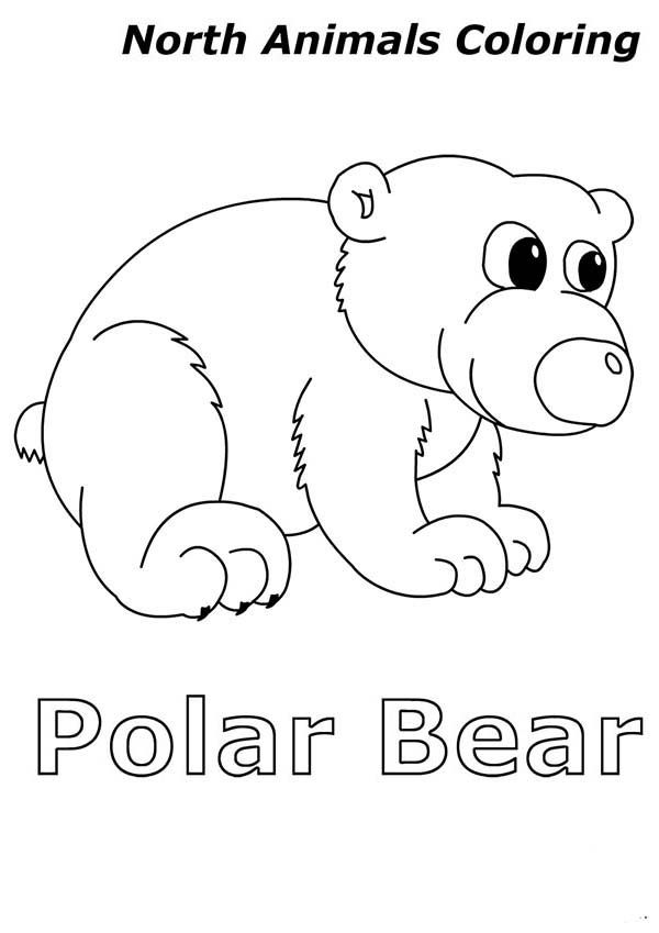 please feel free to grab the image or download it by using our download button you can otherwise print it on papers by using our print it button - Baby Arctic Animals Coloring Pages