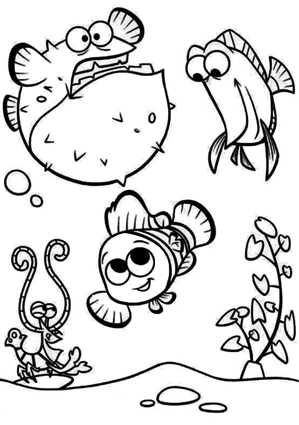 change template pufferfish coloring page pufferfish worksheet