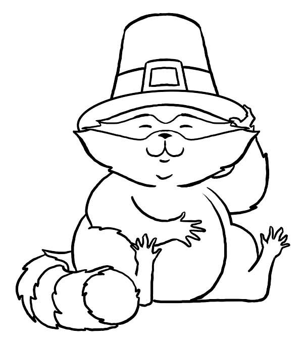 ... , : Cute Racoon Wearing Pilgrim Hat on Thanksgiving Day Coloring Page