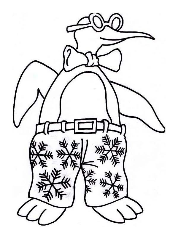 Winter, : Funny Penguin with Winter Themed Trouser for Winter Coloring Page
