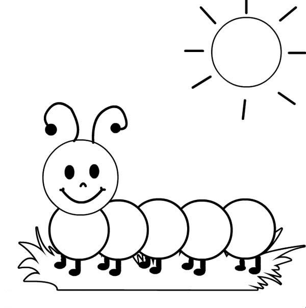 Caterpillars, : A Caterpillar Sunbathing in the Sunshine Coloring Page