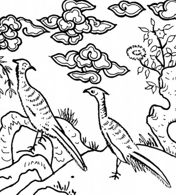 Peacock, : A Classic Chinese Drawing of Two Peacocks Coloring Page