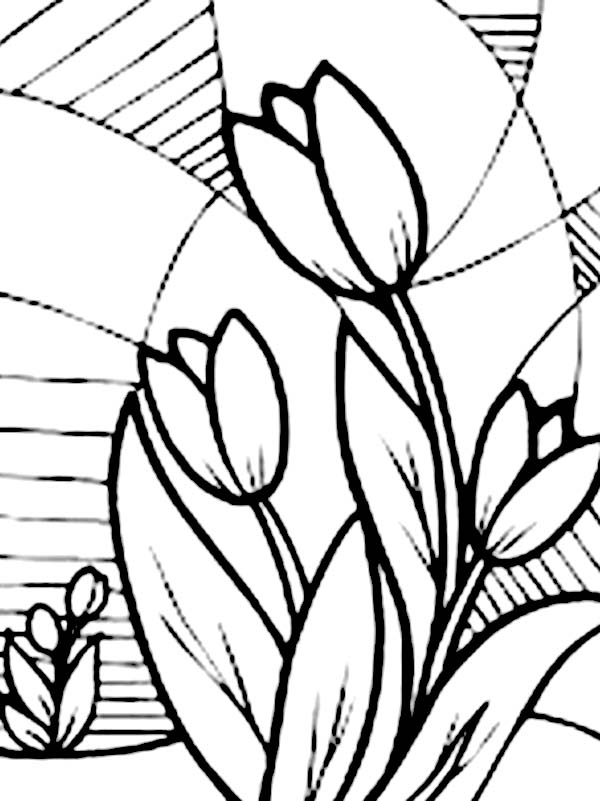 Tulips, : A Classic Glass Mural of Tulips Coloring Page