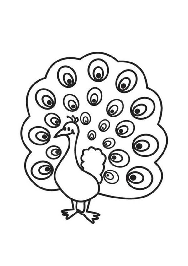 Peacock, : A Cute Peacock with Beautiful Eyes Plumage Coloring Page