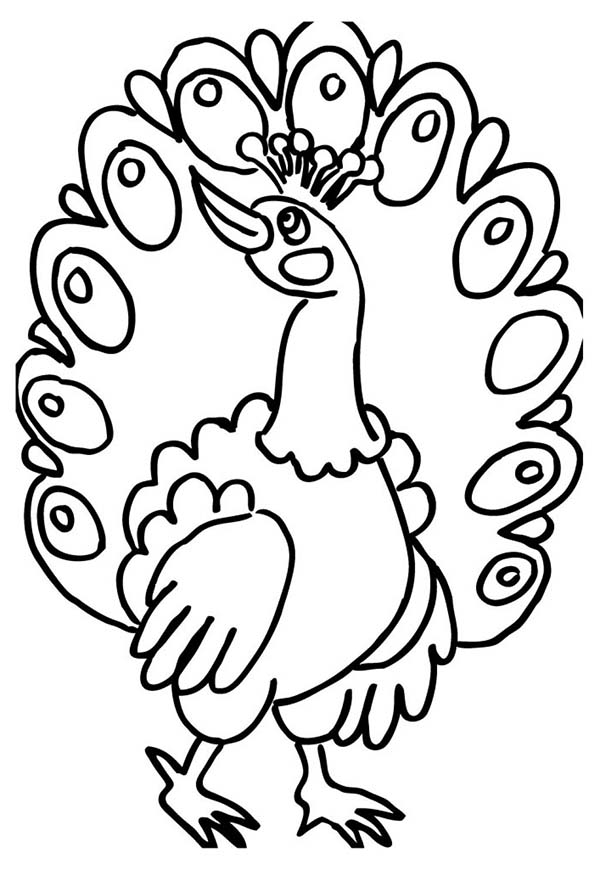 Peacock, : A Female Peacock Fan Out Her Tail Feather Coloring Page