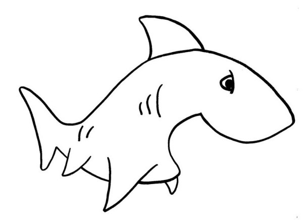 Sharks, : A Simple Drawing of Shark Coloring Page