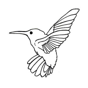 hummingbird coloring pages flowers and leaves beauty ruby throated humming bird eat nectar coloring page