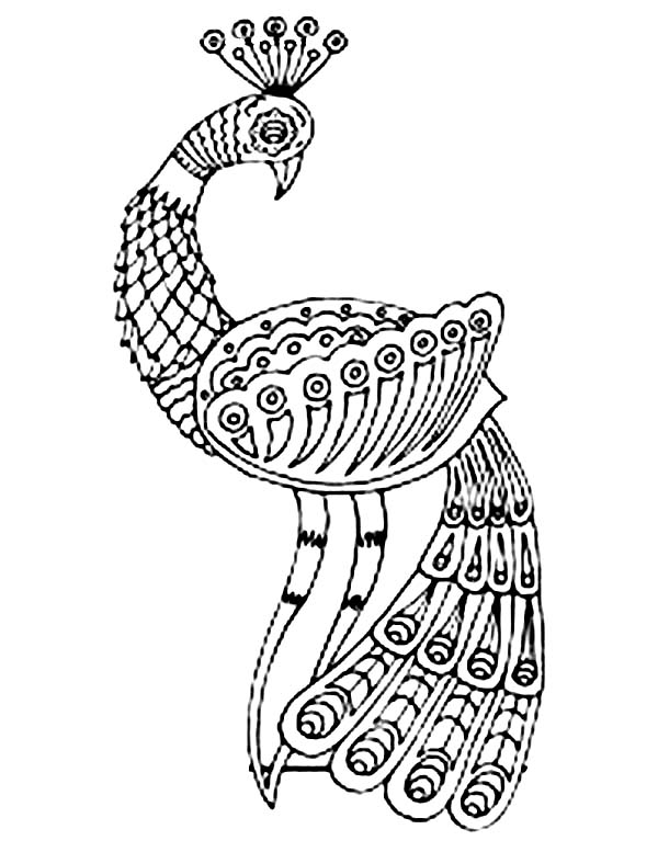 Peacock, : An Art Drawing of Glamorous  Peacock Coloring Page