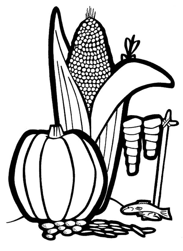 Fruits and Vegetables, : Corn and Watermelon in the Farm Coloring Page