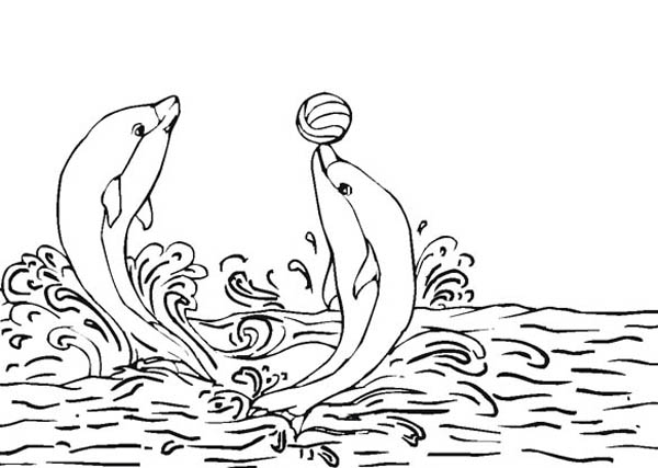 Dolphin, : Dolphins-play-ball-coloring-page.jpg