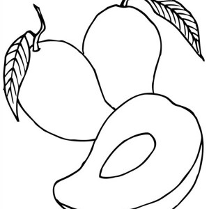 fresh tropical mango coloring page