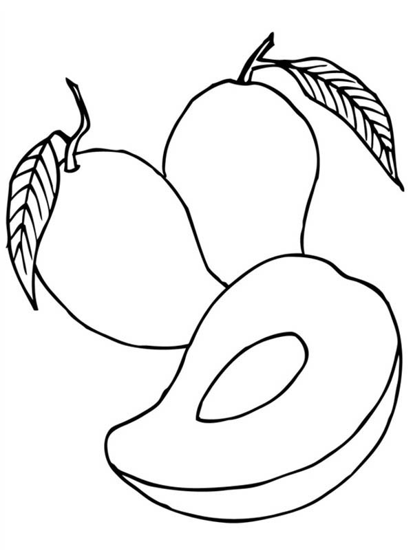 Fruits and Vegetables, : Fresh Tropical Mango Coloring Page
