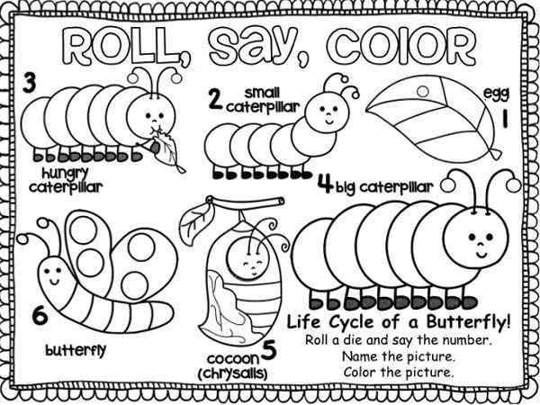 Caterpillars, : From Caterpillar Into a Butterfly Coloring Page