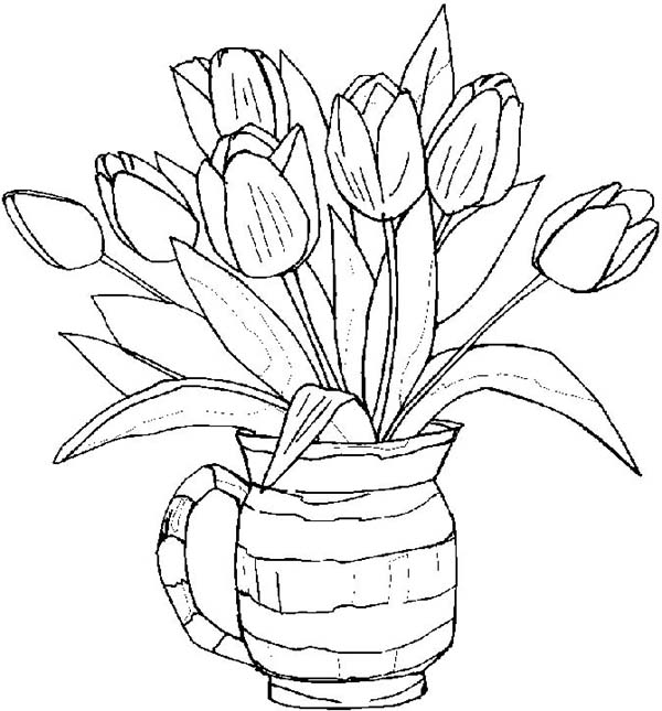 Tulips, : Growing Tulips in a Pot Coloring Page