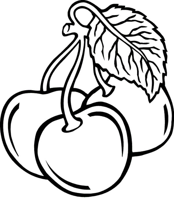 Fruits and Vegetables, : Three Cherry in One Stalk Coloring Page