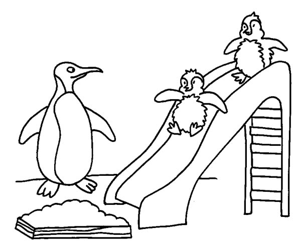 Penguins, : Two Baby Penguins Playing Slide with Their Mother Coloring Page