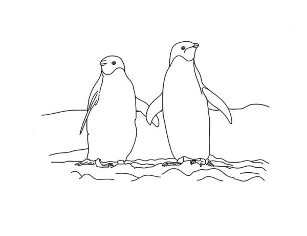 Penguins, : Two Penguins Holding Hand Together on the Snow Coloring Page