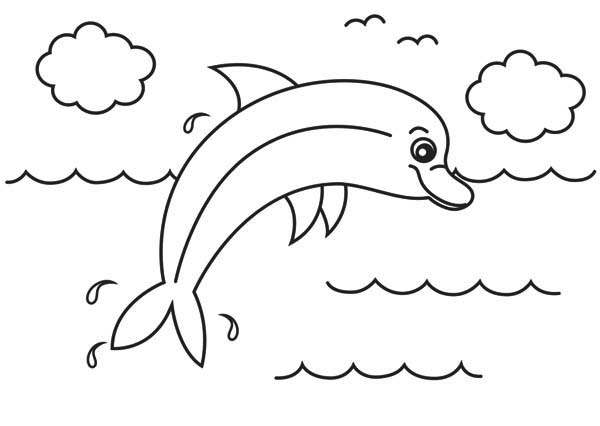 Dolphin, : cute-and-funny-dolphin-colorong-page.jpg
