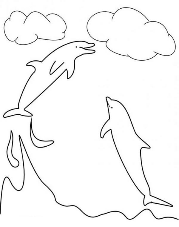 Dolphin, : dolphin-can-catch-the-clouds-here-at-colorkiddo-coloring-page.jpg