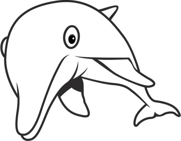 Dolphin, : dolphin-glares-at-you-free-coloring-page.jpg