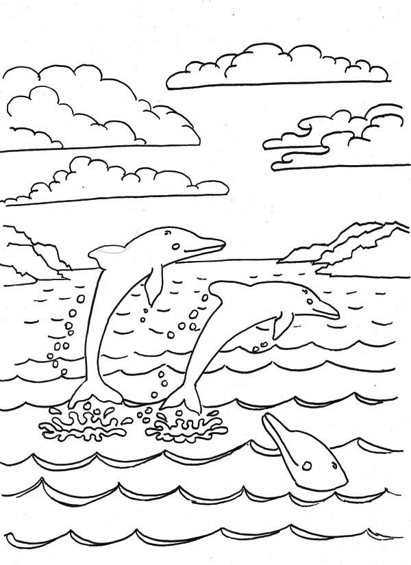 Dolphin, : dolphins-in-a-bay-coloring-page.jpg