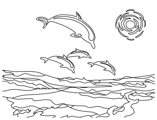Dolphin, : dolphins-on-silhouette-coloring-page.jpg