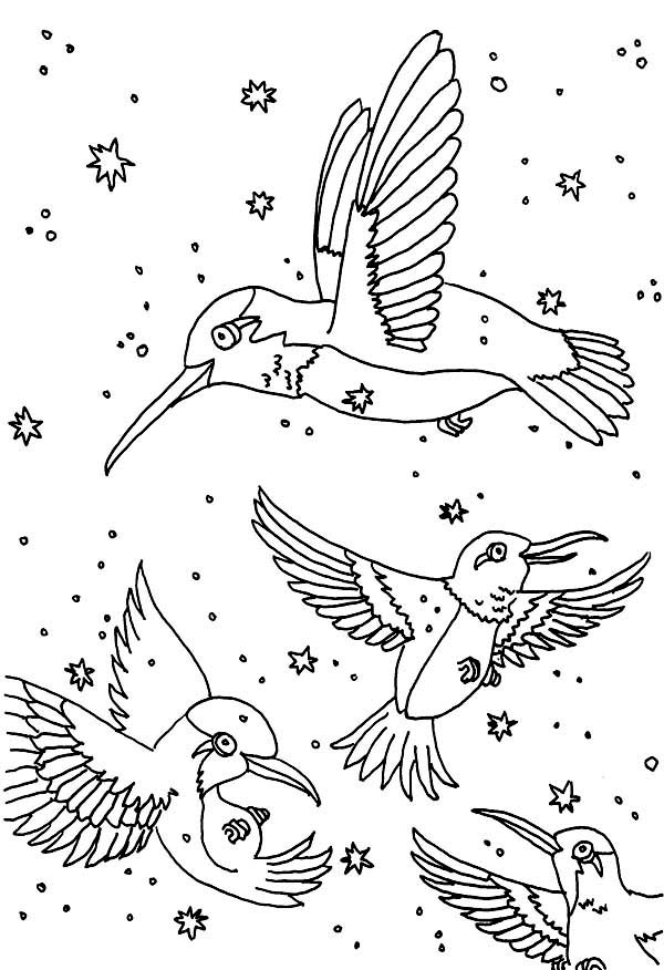 Hummingbirds, : fantasy-hummingbirds-coloring-page.jpg