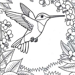 hummingbird activity on a coloring page to color  Kids Play Color