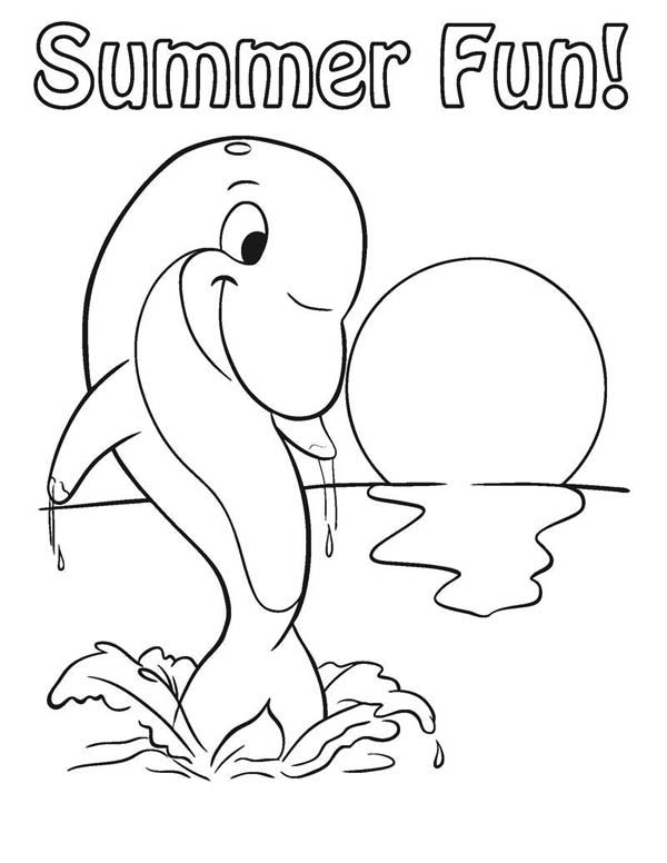 Dolphin, : its-dolphin-summer-time-coloring-page.jpg