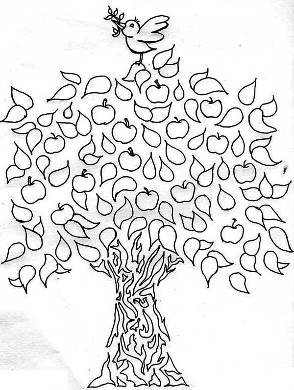 Apple Tree, : A Bird and an Apple Tree Coloring Page