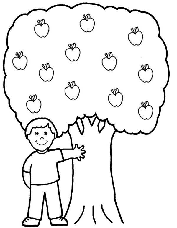 Apple Tree, : A Boy and His Apple Tree Coloring Page