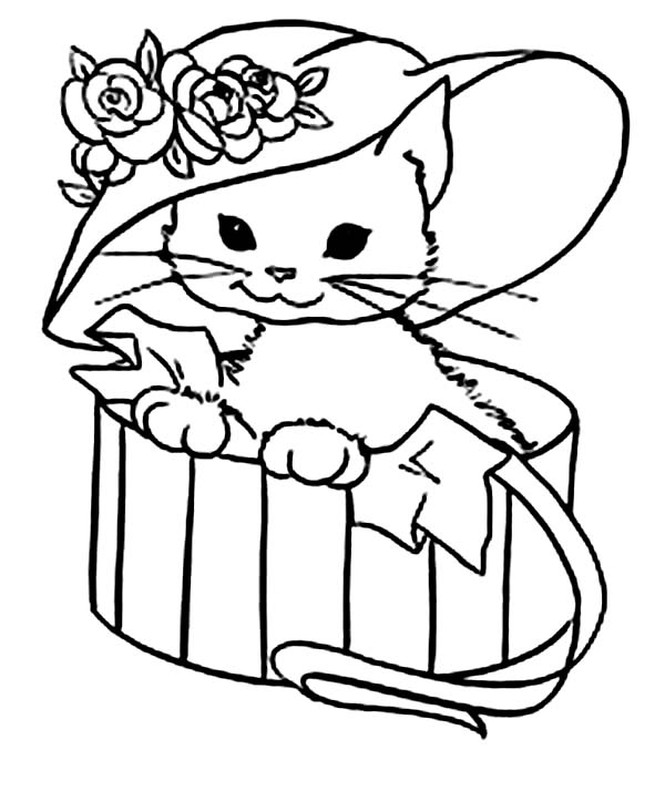 Kitty Cat, : A Cute Kitty Cat with a Fancy Hat Coloring Page