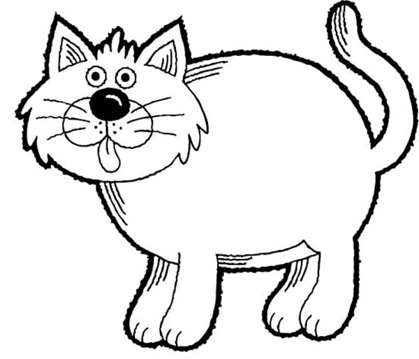 Kitty Cat, : A Funny Drawing of Fat Kitty Cat Coloring Page