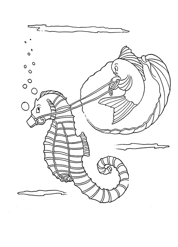 Seahorse, : A Funny Fish Riding Seahorse Coloring Page