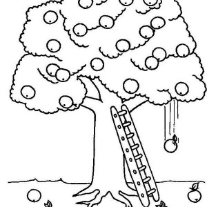 Apple Tree Picture Coloring Page Apple Tree Picture Coloring Page