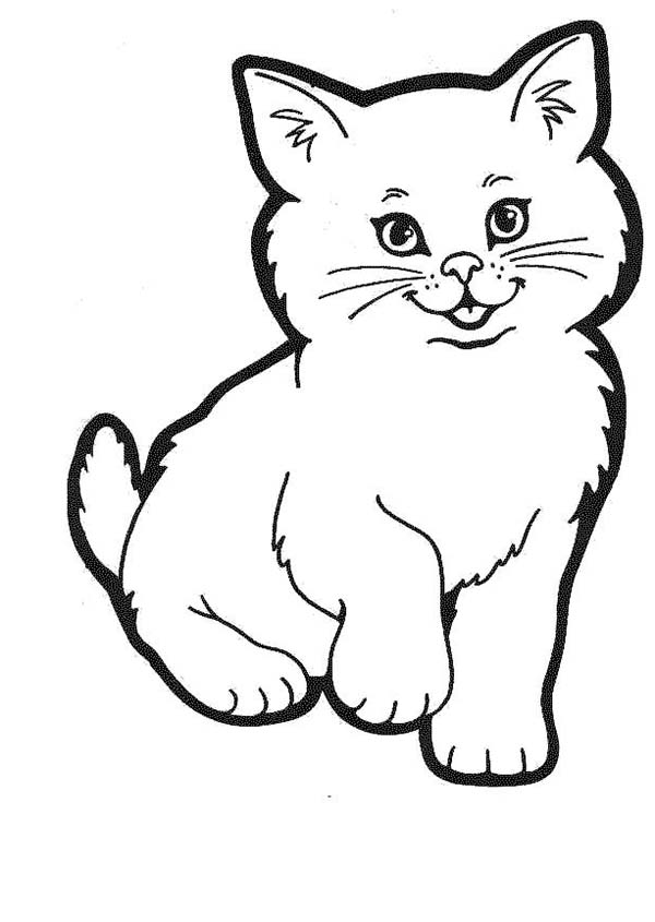 Kitty Cat, : A Lovely Kitty Cat in a Cat Show Coloring Page