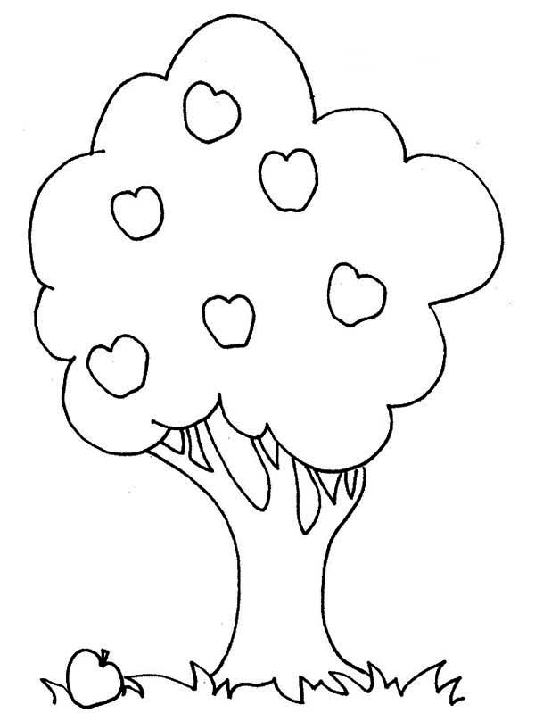 Apple Tree, : An Apple and an Apple Tree Coloring Page