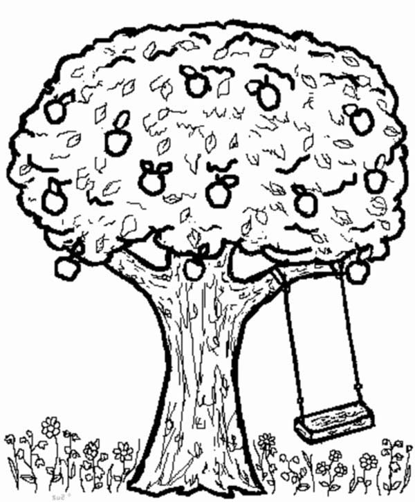 Apple Tree, : Apple Tree and Swing Coloring Page