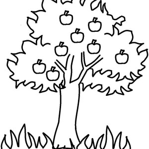 flowers trees grass colouring pages
