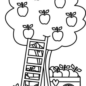 Basket Full of Apple and Apple Tree Coloring Page Kids Play Color