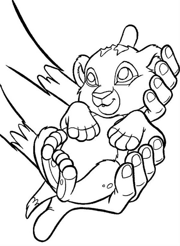 Lion King, : Cute Baby Simba The Lion King Coloring Page