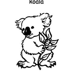 cute koala on australia day coloring page
