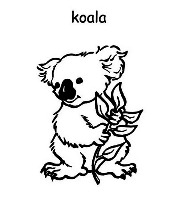 australia day coloring pages ideas - Australia Coloring Pages Printable