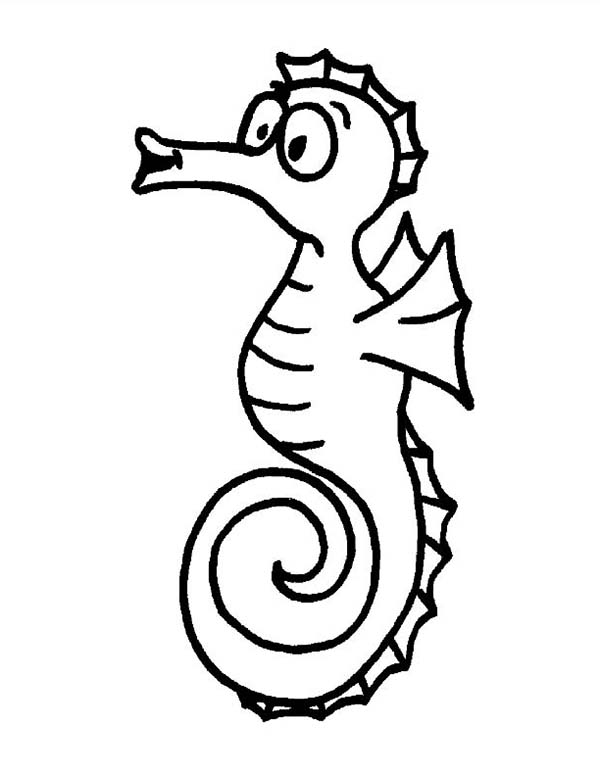 Seahorse, : Hilarious Seahorse Making a Funny Face Coloring Page