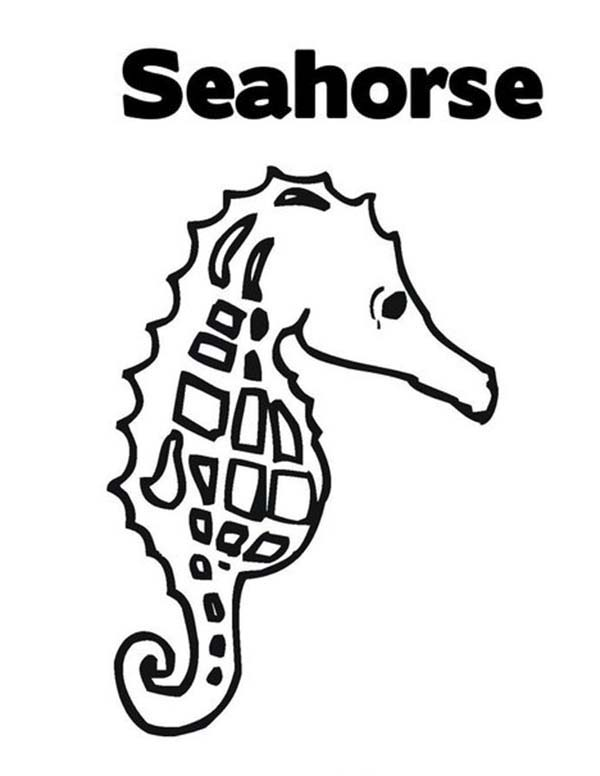Seahorse, : Lets Learn the Word Seahorse Coloring Page