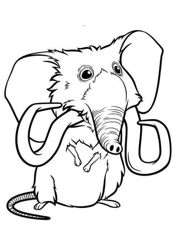The Croods, : Meet Mousephant from the Croods Coloring Page
