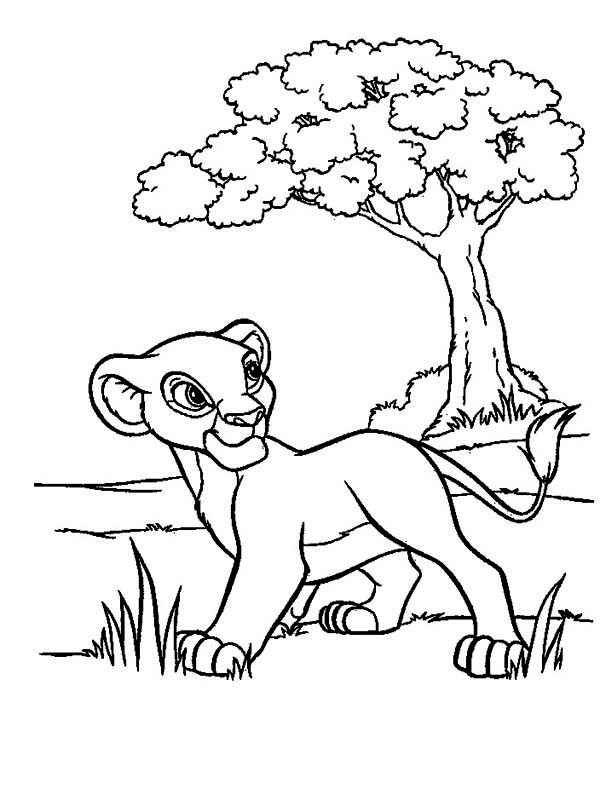 Lion King, : Simba Walking in the Meadow The Lion King Coloring Page