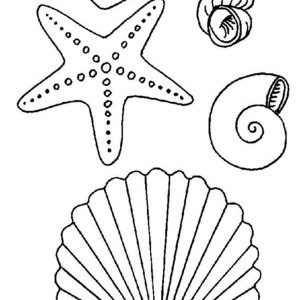 starfish and the coral reef coloring page kids play color