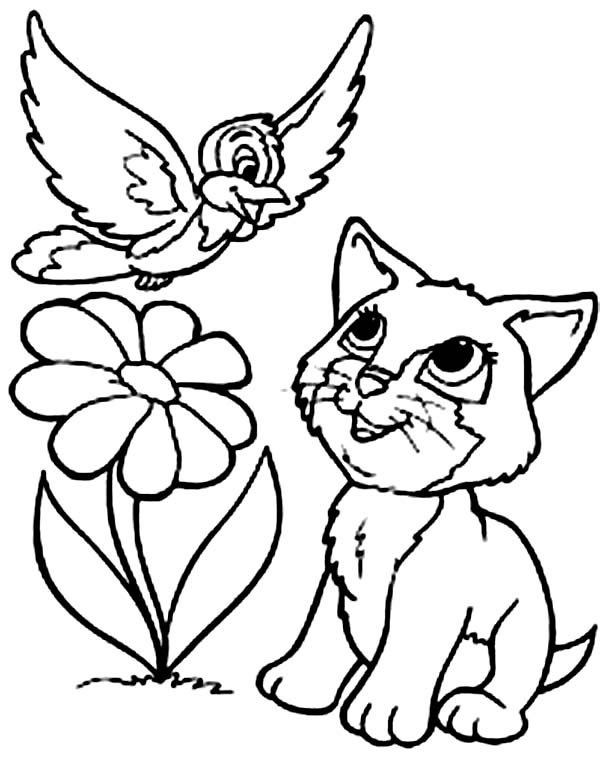 Kitty Cat, : This Kitty Cat Talk with the Bird Coloring Page
