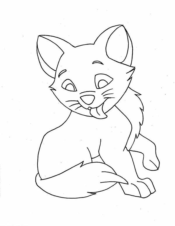 Kitty Cat, : This Kitty Cat is Licking Its Body Coloring Page